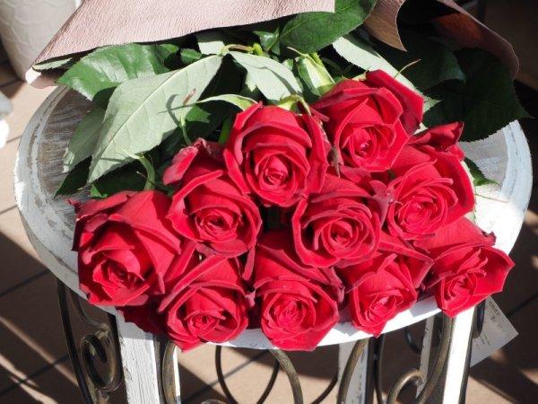 画像1: お色が選べるバラの花束【10本】 (1)